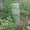 blf_2005 050