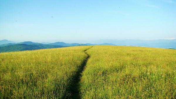 Appalachian trail at Max Patch