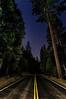 King's Canyon Highway at Night