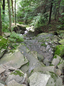 08-08 Hancock Quarry run 24