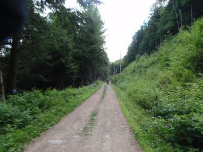 08-08 Hancock Quarry run 16