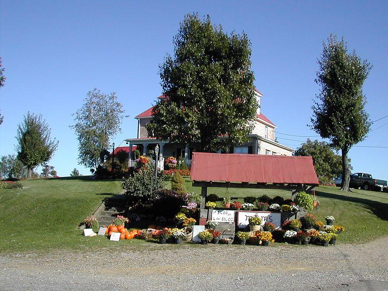 Palmer Ridge Nursery