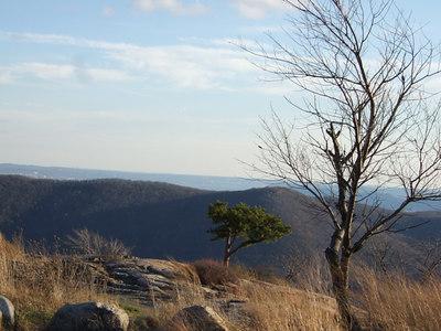 12-02-06 Bear Mt with marsh 009