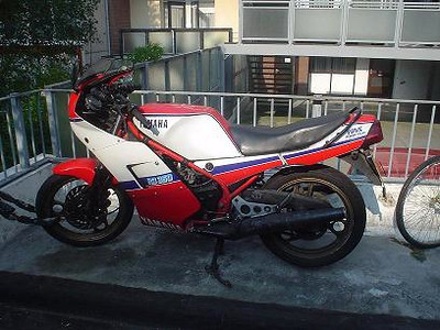 DSC00529 x 2