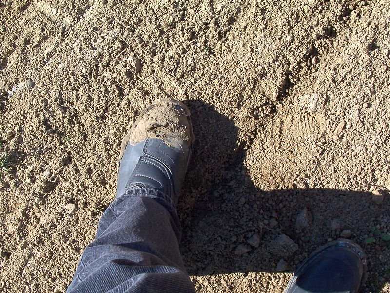 Muddy foot from our entrance into the dirt world just outside Lake Ellsinore.