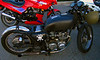 Universal Jap Rat Bike