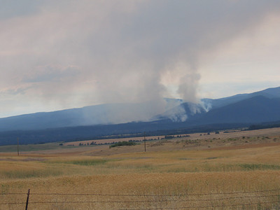 Forest Fire.  This caused a re-route on Saturday.