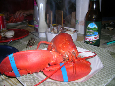 Nothing like a freshly steamed lobster after a day in the saddle.  And the Long Trail Ale didn't hurt either.