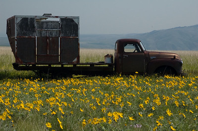 An old truck in the farm land above the Snake outside of Clarkston.