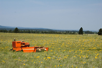 Farmland outside Clarkston, Wa.