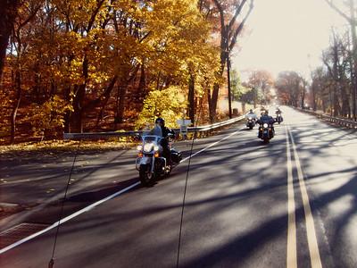 Fall in November