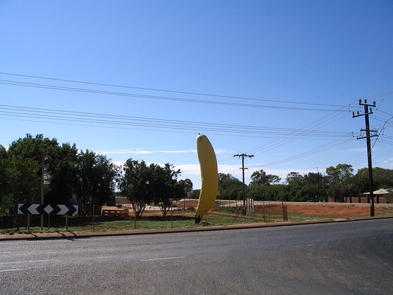 Carnarvon, Western Australia. Grows 70% of WA'sfruit and vegies thanks to the Gascoyne River (mostly under the surface water).<br />  Turn left at the big bannana and you can't miss the plantations.
