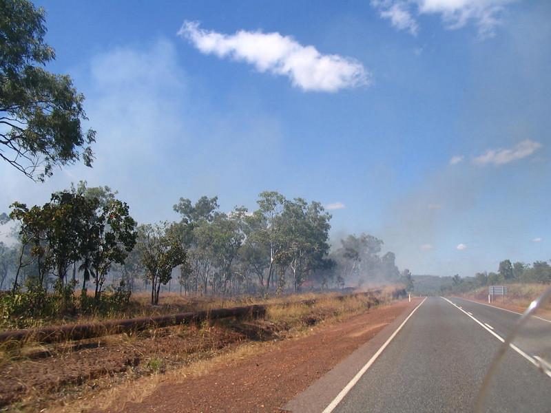 More bush fires.