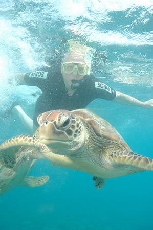 AU 19 Cairns, snorkle Great Barrier Reef