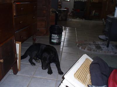 2008-10-11