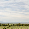 The high desert of central Oregon.  Lots of trees.  By this time, its over ninety degrees.
