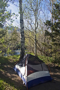 I camped in an Aspen grove just outside the hot springs on Sunday night.