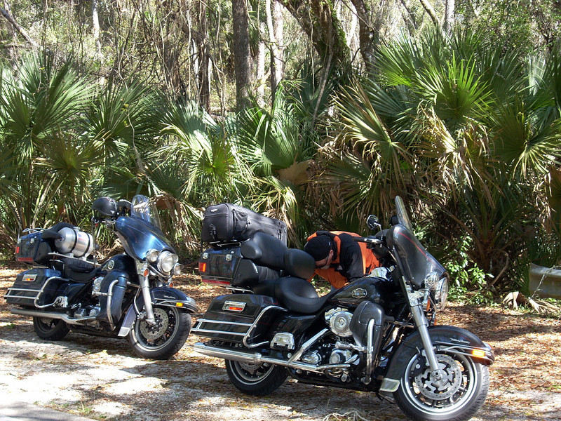 """We took the Old Dixie Highway at one point which gives us a feel for the """"Old"""" Florida."""