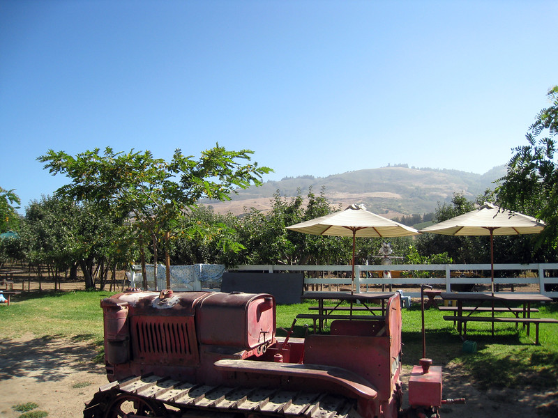 the backyard of the pie shop, with this awesome ancient tractor, and nice covered picnic tables.