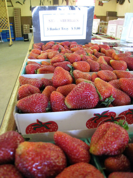 strawberries... if ihad had any room in my tank bag, i probably would have bought some.