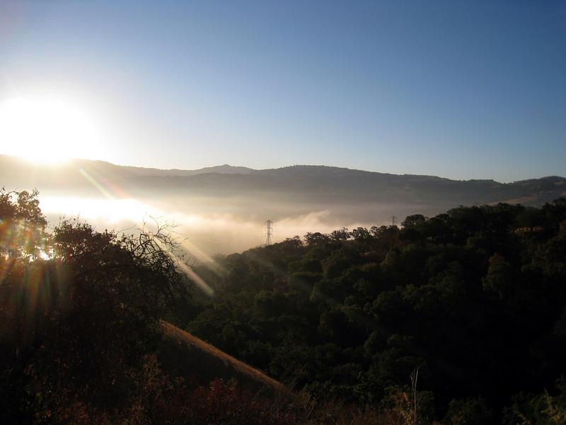 i love the sun & fog early morning.