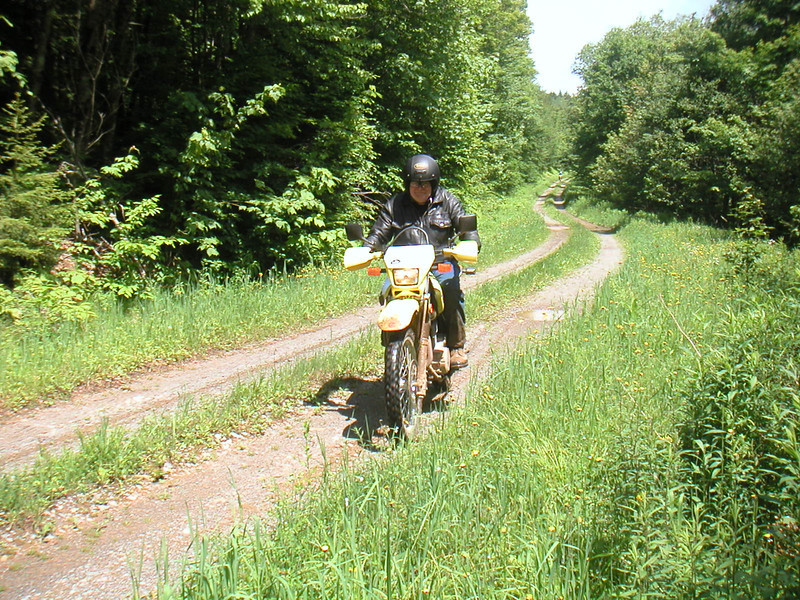 Andy on the DR650