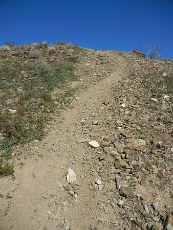 Nowwhat, Dunerat & Toast El Paso Mts