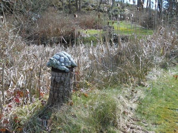 20120401 Pond Art