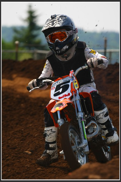 IMG4265-L.jpg