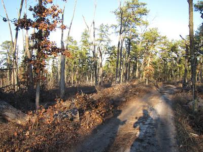 2012 Pine Barrens 300