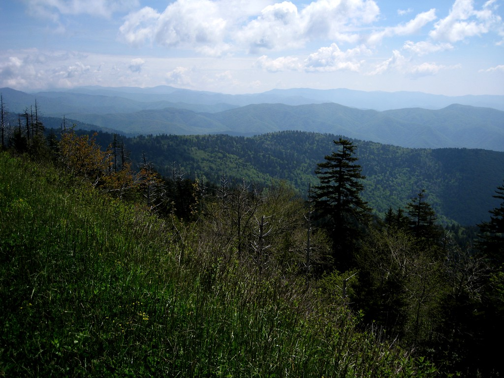 On the trail up to Clingman's Dome