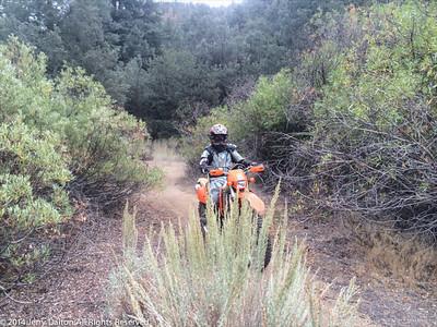2014-9-28 Toms BD Ride IMG_4588_edLR