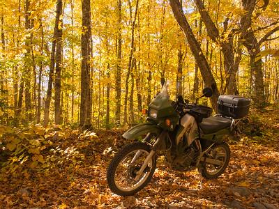 10-12 to 14-2014 Foliage rides
