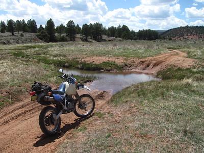 Zuni Mtns. - Eastern Zuni's-Aragon-Bluewater Creek DS Ride  5-16-16