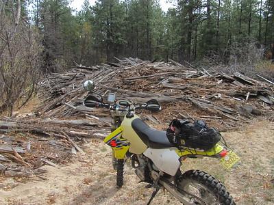 Jemez Mtns. - Deer Creek-Crow Springs-Peggy Mesa DS Ride  10-31-16