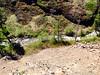 Manastash River