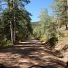 Pennock Pass Ride-17