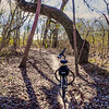 Mountain biking the Waxahachie Texas trail