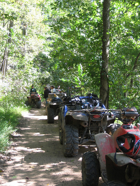 lined up on one of the trails