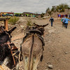 Almost there. The girls said we should of taken the burros. I feel walking  is easier on your butt than riding a mule).