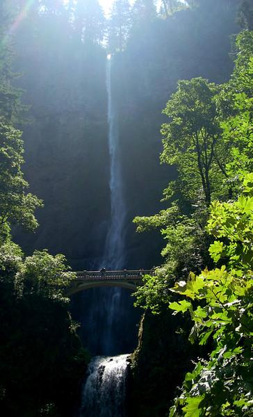 Multnomah Falls, 635 ft high