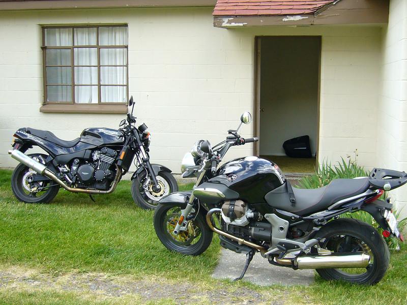 two black beauties