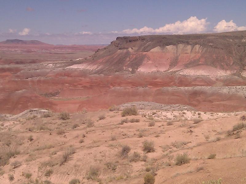 painted desert 2011