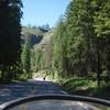 Beautiful roads of north Washington State.