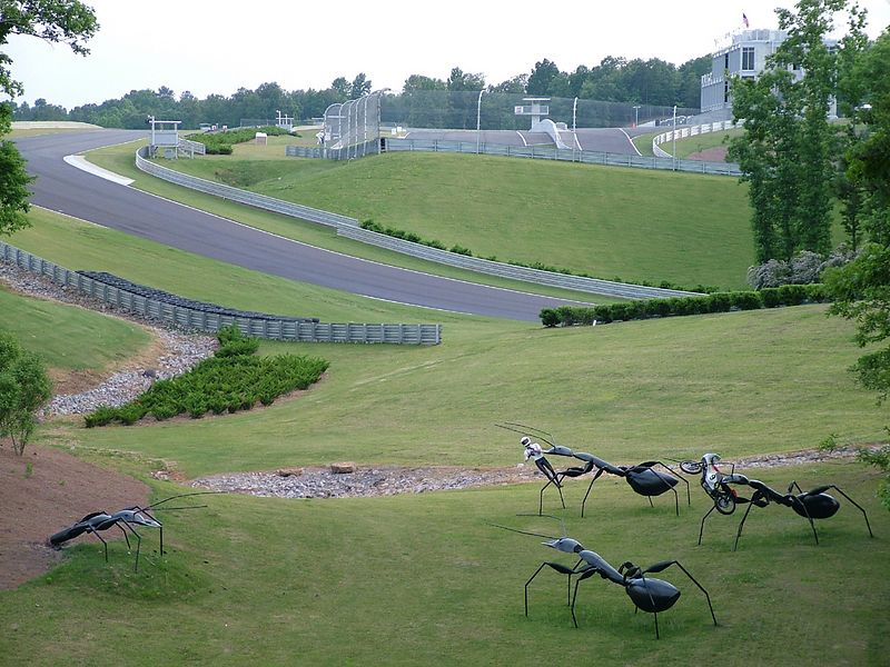 The track winds and bends across green hills. Giant ants have been trained to carry downed riders and their equipment to safety.