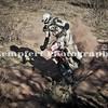 Race1-DD3-1-29-2012_0026