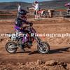 MiniBegC-RGP-11-4-2012_0277
