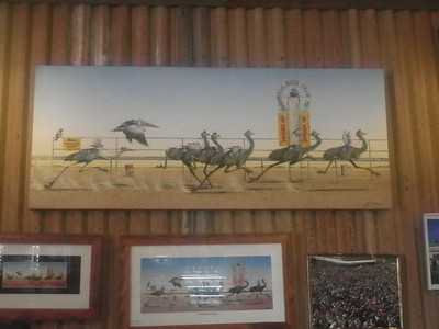 Emu Racing painting