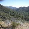 Getting near Prescott, the scenery changes. Not what I imagine when I think of Arizona