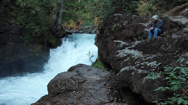 Unnamed falls below Adam's Fork Campground, Cispus River